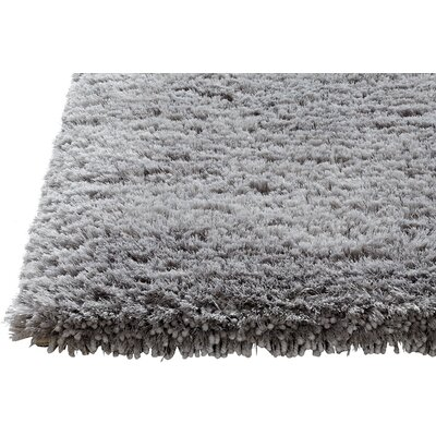 Timeless Light Petroro Area Rug Rug Size: 3 x 5