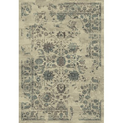 Utopia Cream Area Rug Rug Size: 53 x 77