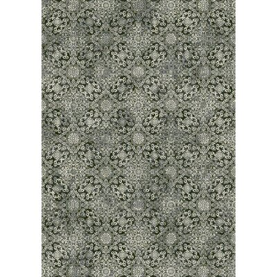 Ancient Garden Steel Blue Area Rug Rug Size: 53 x 77