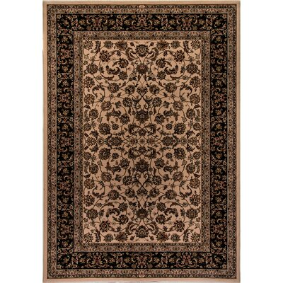 Cirro Ivory / Black Dynamic Area Rug