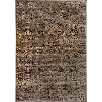 Venice Gray Area Rug Rug Size: Rectangle 92 x 1210