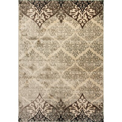 Treasure II Beige Area Rug Rug Size: Rectangle 53 x 77