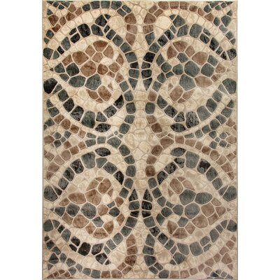 Treasure II Beige Area Rug Rug Size: Rectangle 67 x 96