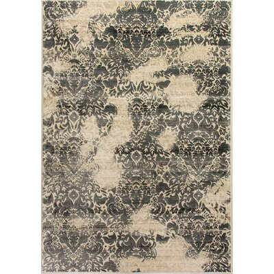 Treasure II Beige/Dark Gray Area Rug Rug Size: Rectangle 53 x 77