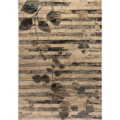 Treasure II Beige/Gray Area Rug Rug Size: 36 x 56