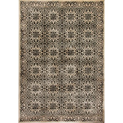 Treasure II Cream/Gray Area Rug Rug Size: 36 x 56