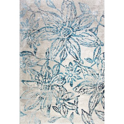 Fusion Area Rug Rug Size: Rectangle 53 x 77