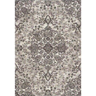 Regal Silver/Gray Area Rug Rug Size: 67 x 96