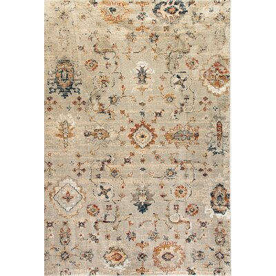 Evolution Light Gray Area Rug Rug Size: 92 x 1210