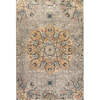 Evolution Light Gray Area Rug Rug Size: Rectangle 53 x 77