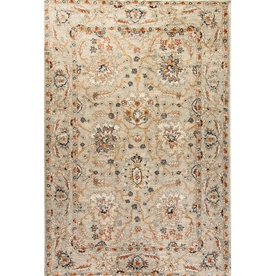 Evolution Light Gray Area Rug Rug Size: 67 x 96
