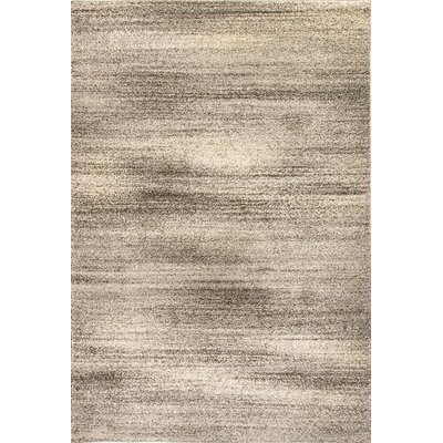 Mirage Light Gray Area Rug Rug Size: 53 x 77
