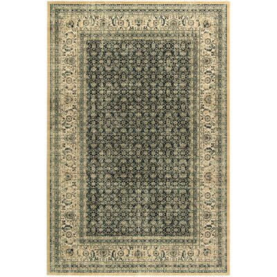 Brilliant Beige/Blue Area Rug Rug Size: Rectangle 53 x 77