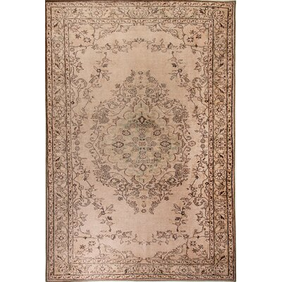 Illusion Beige Area Rug Rug Size: Rectangle 53 x 77