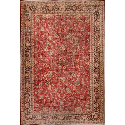 Illusion Red Area Rug Rug Size: Rectangle 53 x 77