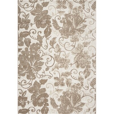 Mysterio Ivory Flowers Area Rug Rug Size: Rectangle 53 x 77