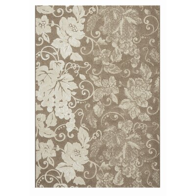 Mysterio Brown Area Rug Rug Size: 53 x 77