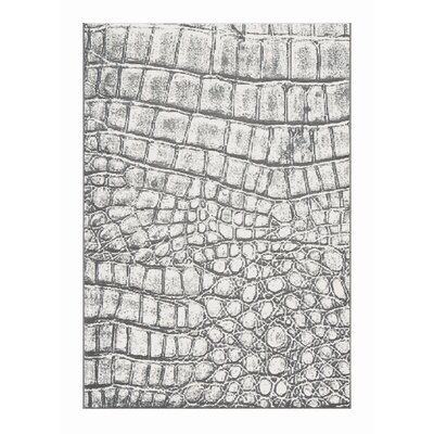 Mysterio Silver Checked Area Rug Rug Size: Rectangle 53 x 77
