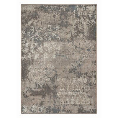 Mysterio Light Silver Rug Rug Size: Rectangle 53 x 77