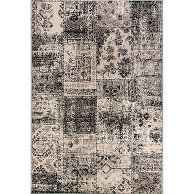 Infinity Black/Silver Area Rug Rug Size: Rectangle 53 x 77