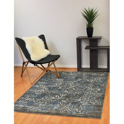 Kingston Dark Grey Area Rug Rug Size: 53 x 78