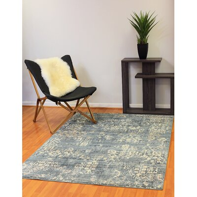 Kingston Light Blue Area Rug Rug Size: 54 x 78