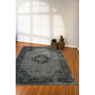 Regal Light Blue Area Rug Rug Size: Rectangle 36 x 56