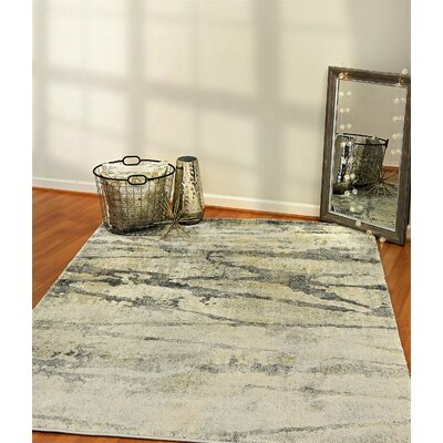 Myranda Gray Area Rug Rug Size: Rectangle 5'4
