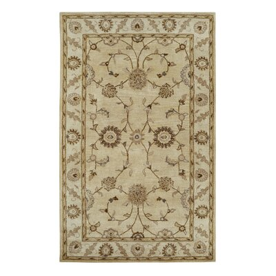Charisma Champagne Area Rug Rug Size: Rectangle 4' x 6'