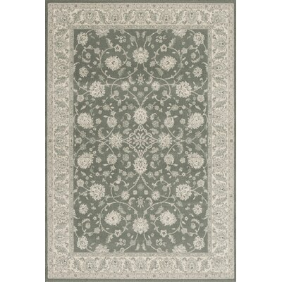 Imperial Slate Blue Area Rug Rug Size: Rectangle 53 x 77