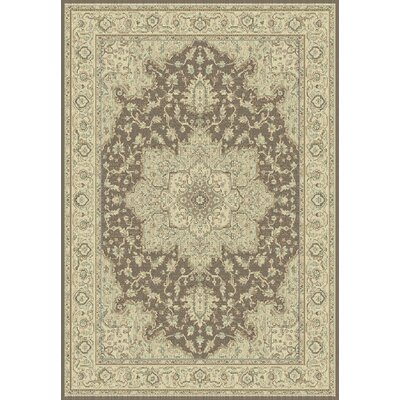 Imperial Brown/Cream Area Rug Rug Size: Rectangle 53 x 77