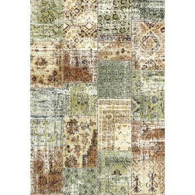 Infinity Green/Brown Area Rug Rug Size: 53 x 77