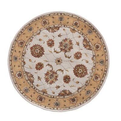 Jewel Ivory/Gold Rug Rug Size: Round 53