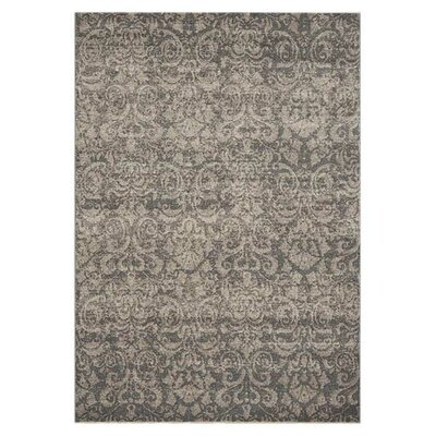 Mysterio Silver Area Rug Rug Size: Rectangle 53 x 77