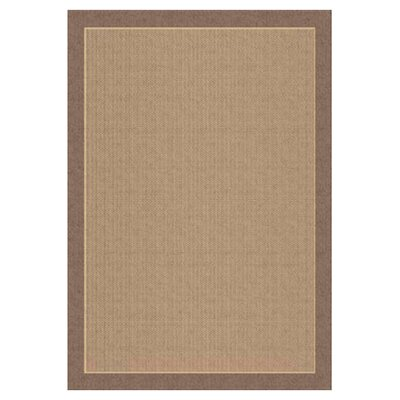 Aliyah Hubbard Brown Indoor/Outdoor Area Rug Rug Size: 53 x 77