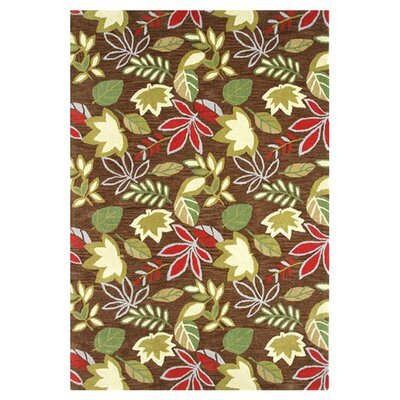 Florence Brown Rug Rug Size: Rectangle 4 x 6