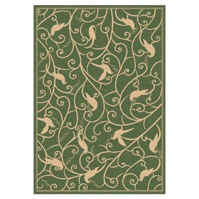 Piazza Hillcrest Green Indoor/Outdoor Area Rug Rug Size: 67 x 96