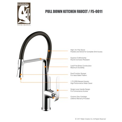 Water Creation Single Handle Pull Out Standard Kitchen Faucet