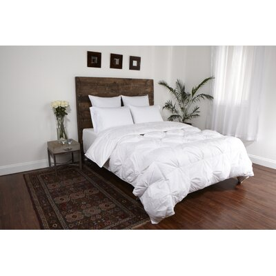 Platinum All Season Down Comforter Size: King