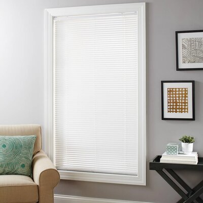 Vinyl Cordless Room-Darkening Mini Horizontal Blind Size: 64 H x 36 W