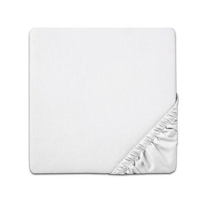Fitted Sheet Color: White, Size: Queen