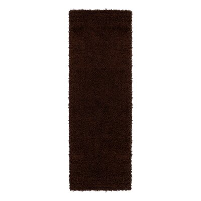 Cozy Brown Indoor/Outdoor Area Rug Rug Size: Runner 2 x 5