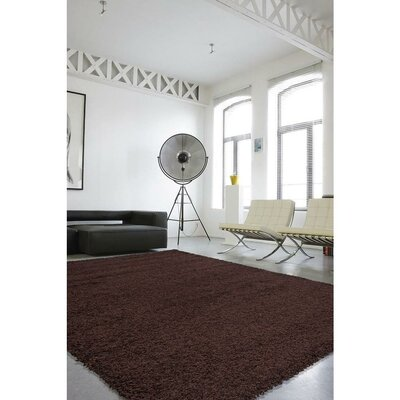 Cozy Brown Indoor/Outdoor Area Rug Rug Size: 5 x 7