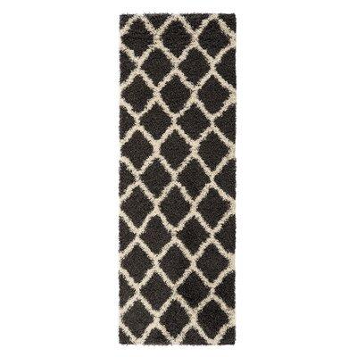 Dauphin Charcoal Indoor/Outdoor Area Rug Rug Size: Runner 2 x 5