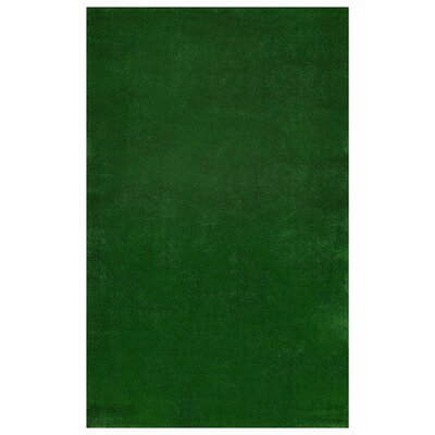 Meadowland Green Indoor/Outdoor Area Rug Rug Size: 3'11