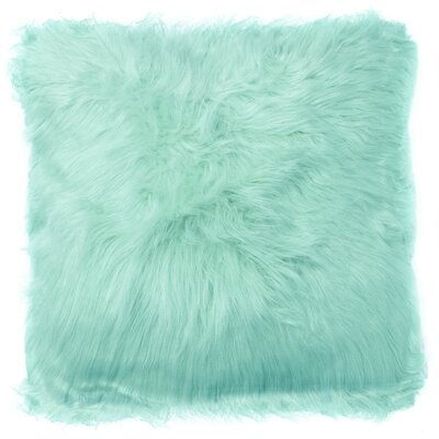 Decorative Throw Pillow Color: Aqua