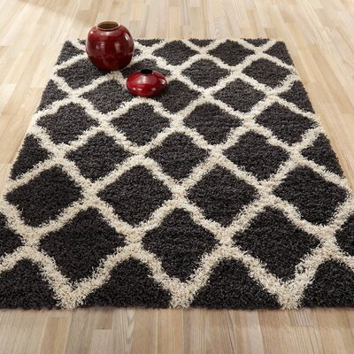 Charcoal Gray and Cream Area Rug