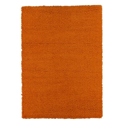 Christiane Plush Shaggy Orange Area Rug