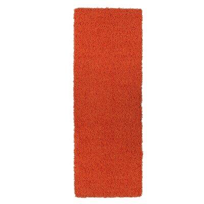 Cozy Orange Indoor/Outdoor Area Rug Rug Size: Runner 27 x 8