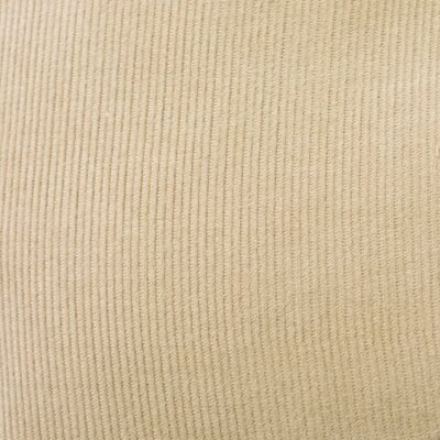 Mini Corduroy Woven Cotton Dining Chair Cushion Fabric: Beige